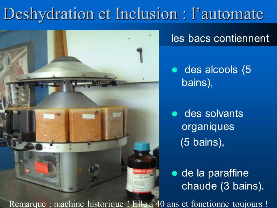 Deshydration et Inclusion : l'automate