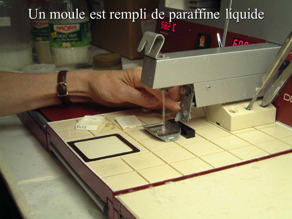 Un moule est rempli de paraffine liquide