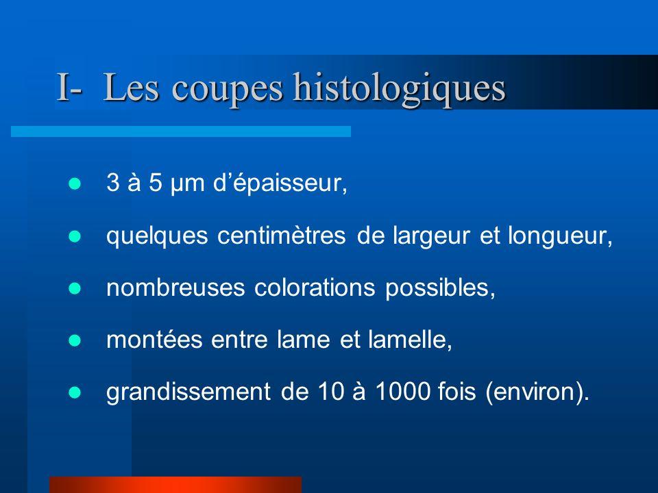 I- Les coupes histologiques