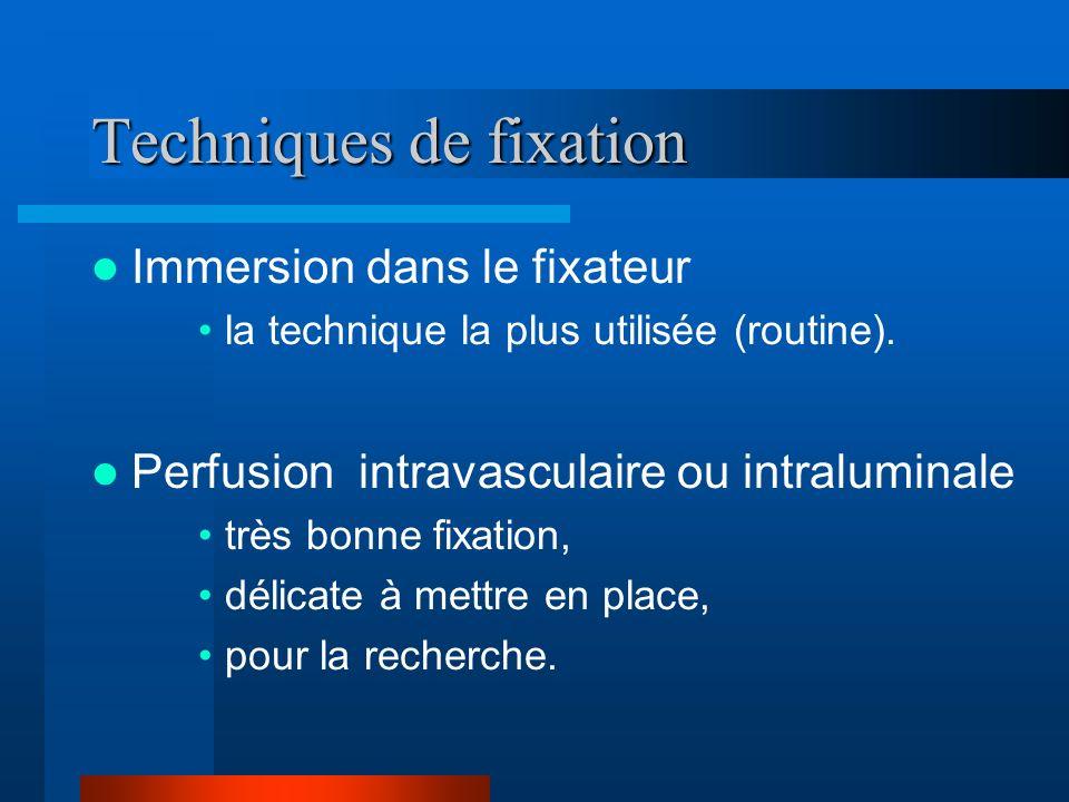 Techniques de fixation