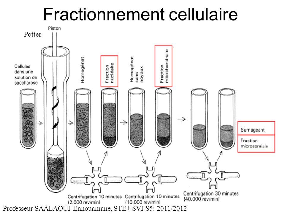 Fractionnement cellulaire
