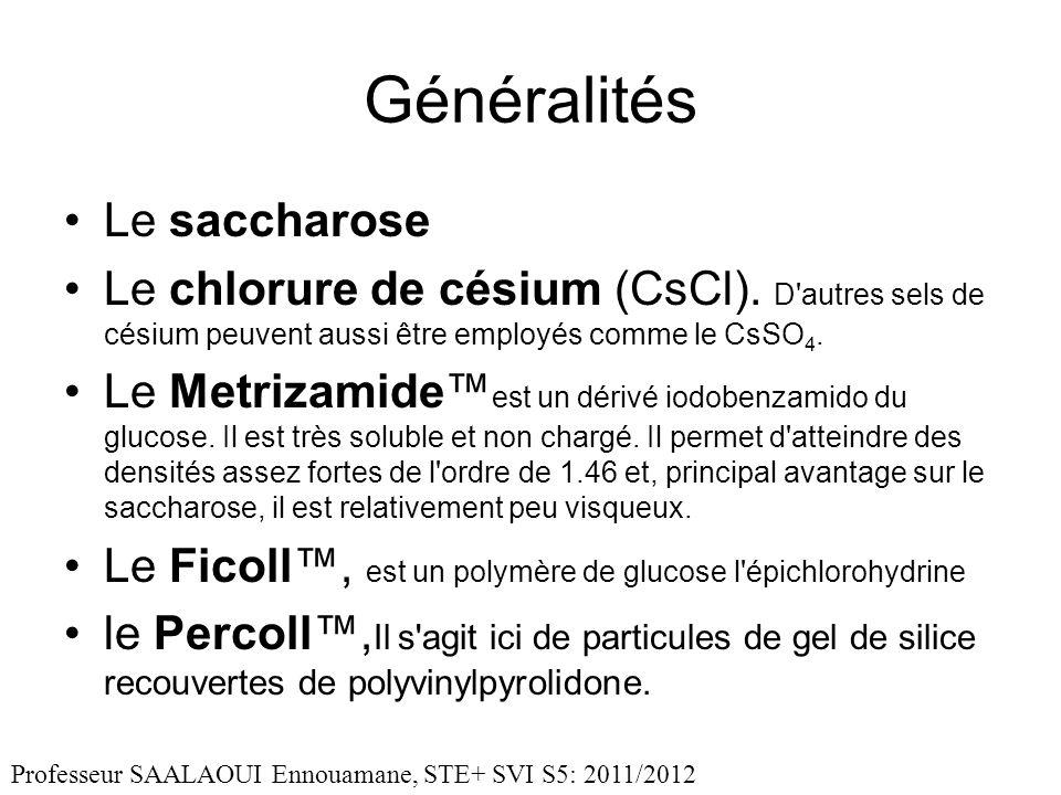 Généralités Le saccharose