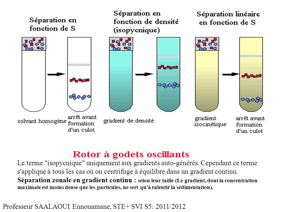Le terme isopycnique uniquement aux gradients auto-générés