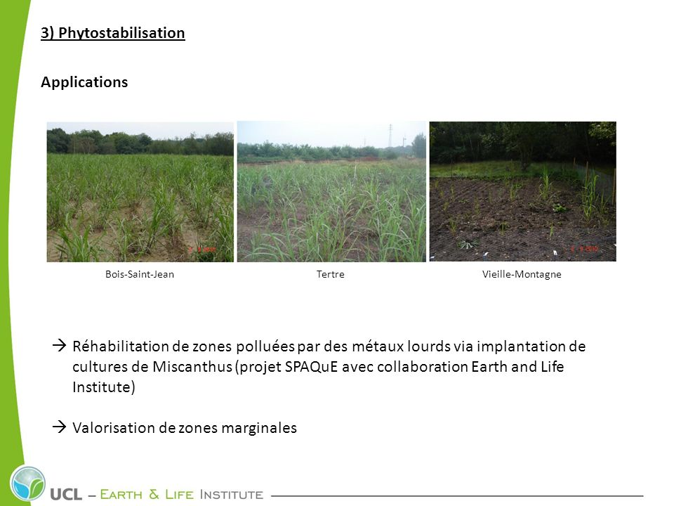 3) Phytostabilisation Applications