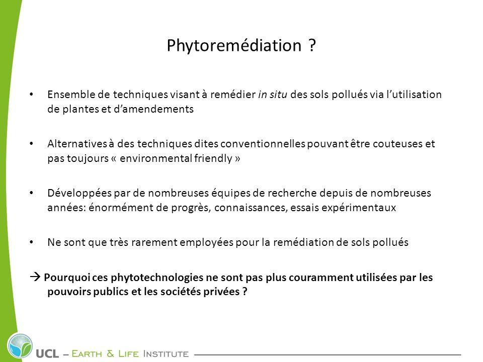 Phytoremédiation Ensemble de techniques visant à remédier in situ des sols pollués via l'utilisation de plantes et d'amendements.