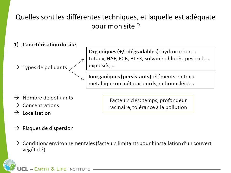 Facteurs clés: temps, profondeur racinaire, tolérance à la pollution