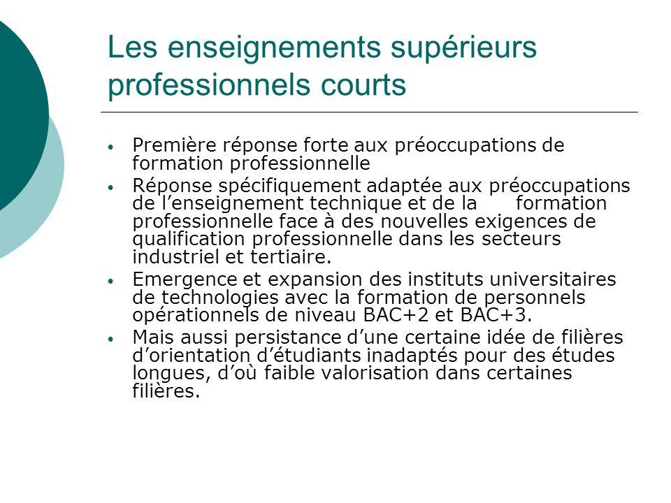 Les enseignements supérieurs professionnels courts