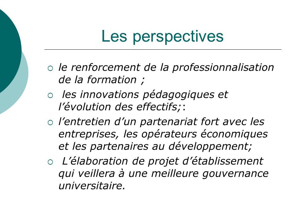 Les perspectivesle renforcement de la professionnalisation de la formation ; les innovations pédagogiques et l'évolution des effectifs;: