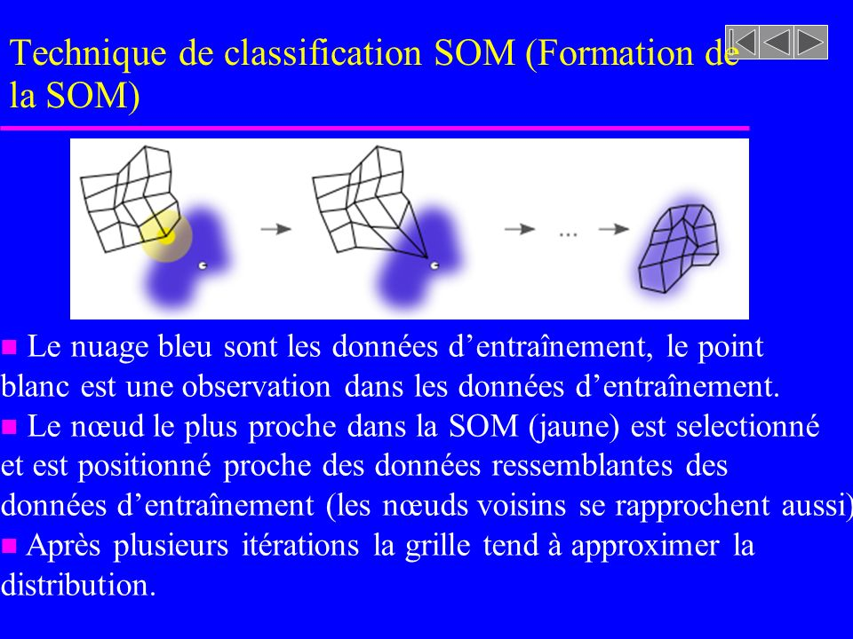 Technique de classification SOM (Formation de la SOM)