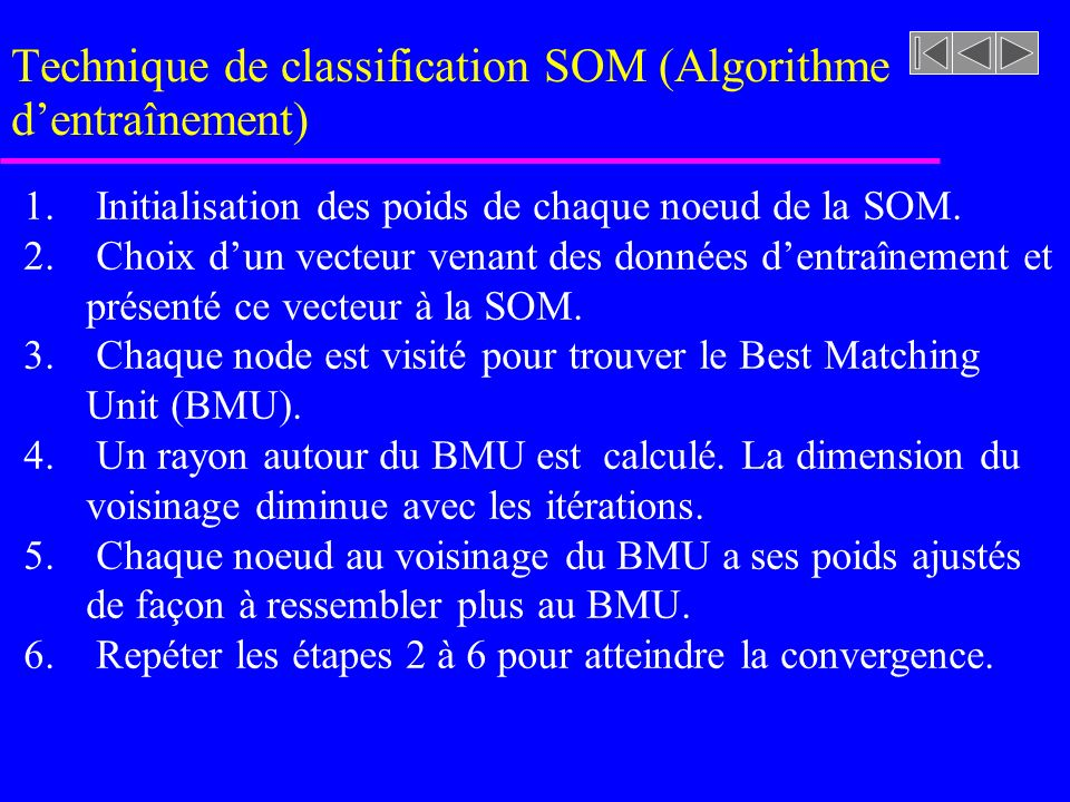 Technique de classification SOM (Algorithme d'entraînement)