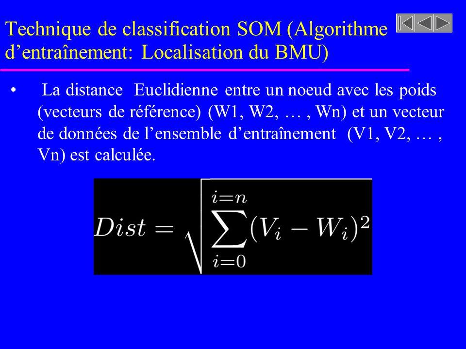 Technique de classification SOM (Algorithme d'entraînement: Localisation du BMU)