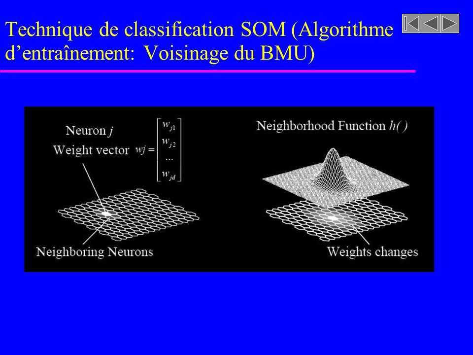 Technique de classification SOM (Algorithme d'entraînement: Voisinage du BMU)