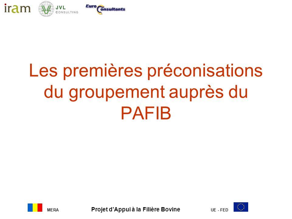 Les premières préconisations du groupement auprès du PAFIB