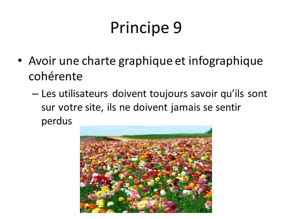 Principe 9 Avoir une charte graphique et infographique cohérente