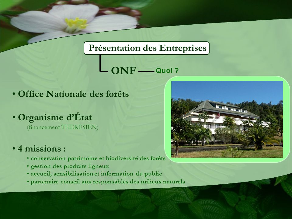 ONF Présentation des Entreprises Office Nationale des forêts