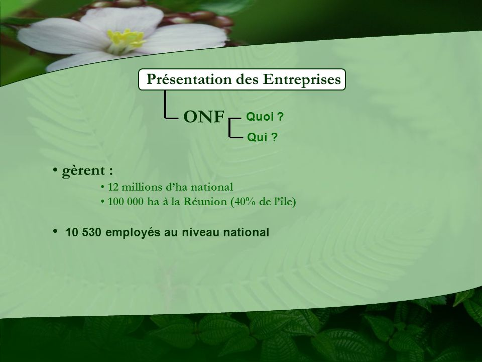 ONF Présentation des Entreprises gèrent :