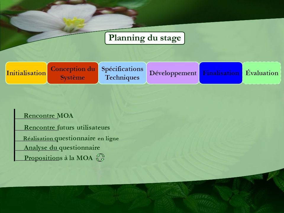 Planning du stage Initialisation Conception du Système Spécifications
