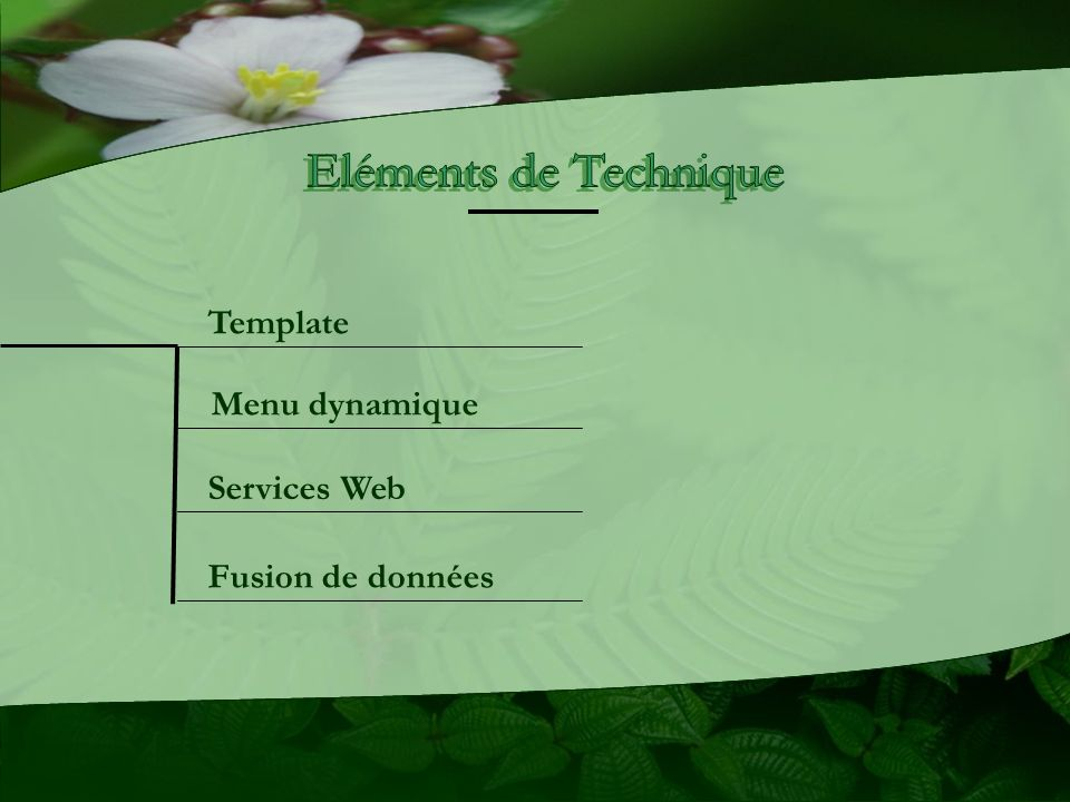 Eléments de Technique Template Menu dynamique Services Web