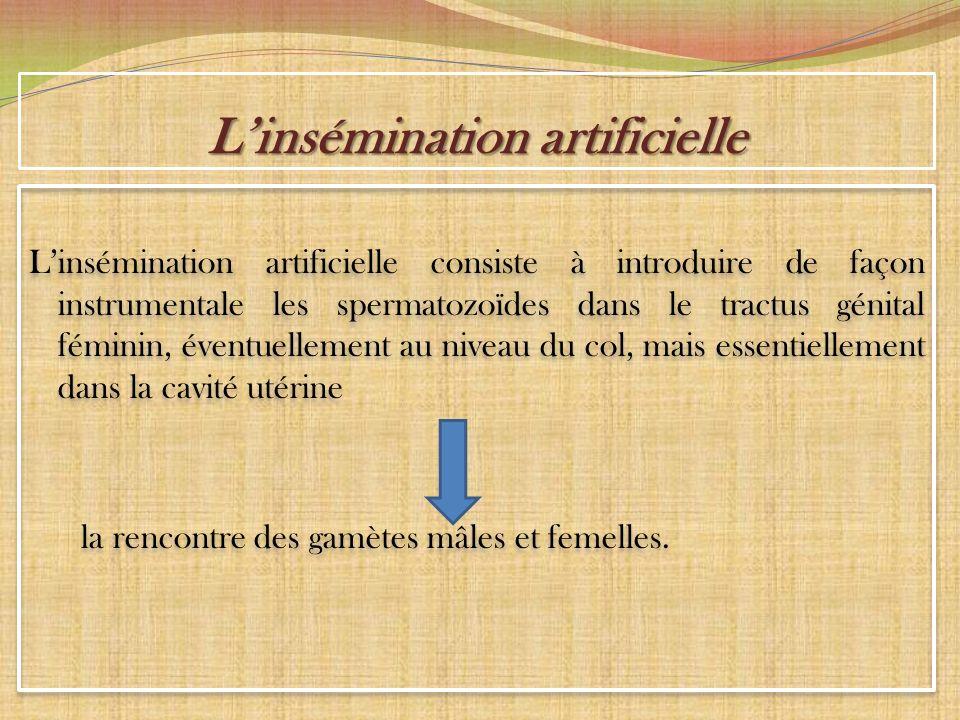 L'insémination artificielle