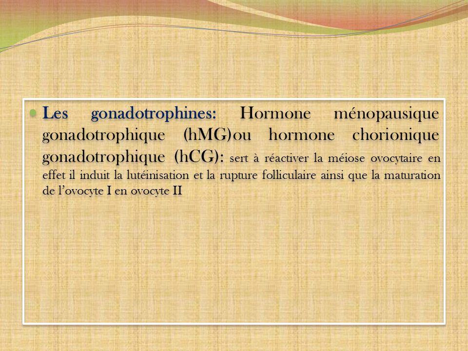 Les gonadotrophines: Hormone ménopausique gonadotrophique (hMG)ou hormone chorionique gonadotrophique (hCG): sert à réactiver la méiose ovocytaire en effet il induit la lutéinisation et la rupture folliculaire ainsi que la maturation de l'ovocyte I en ovocyte II