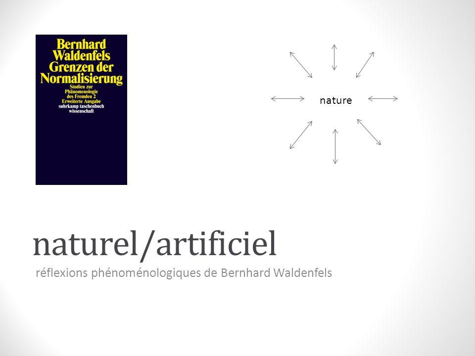 réflexions phénoménologiques de Bernhard Waldenfels