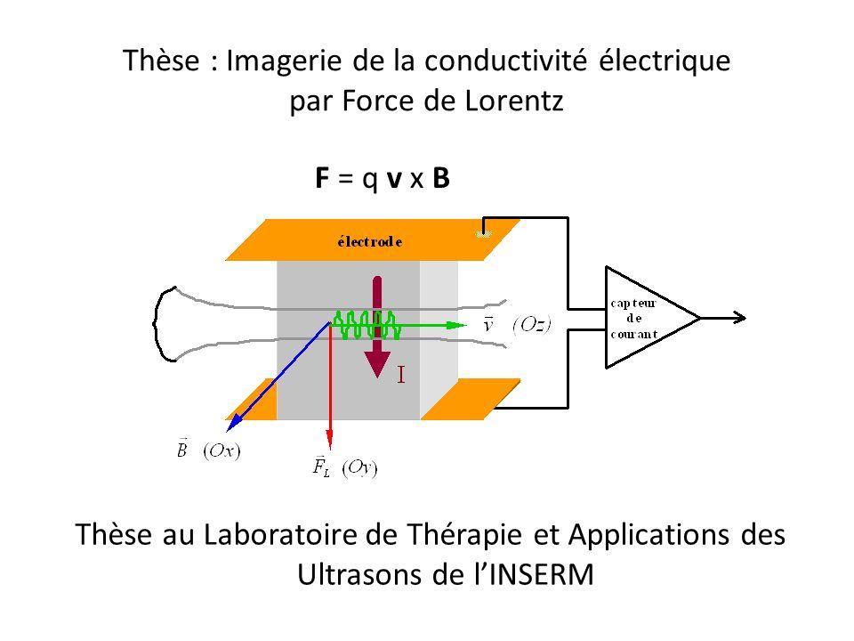 Thèse : Imagerie de la conductivité électrique par Force de Lorentz