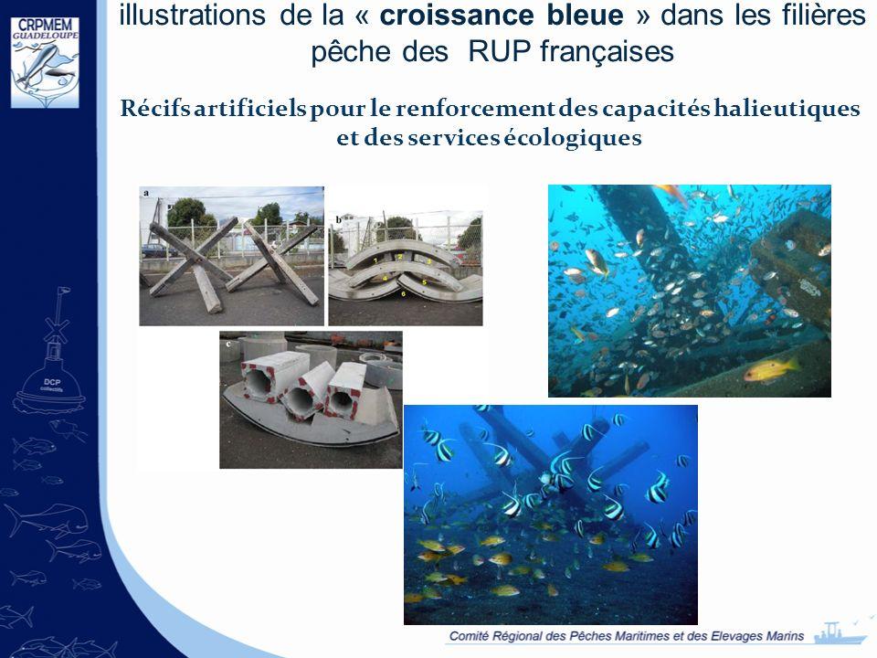 illustrations de la « croissance bleue » dans les filières pêche des RUP françaises