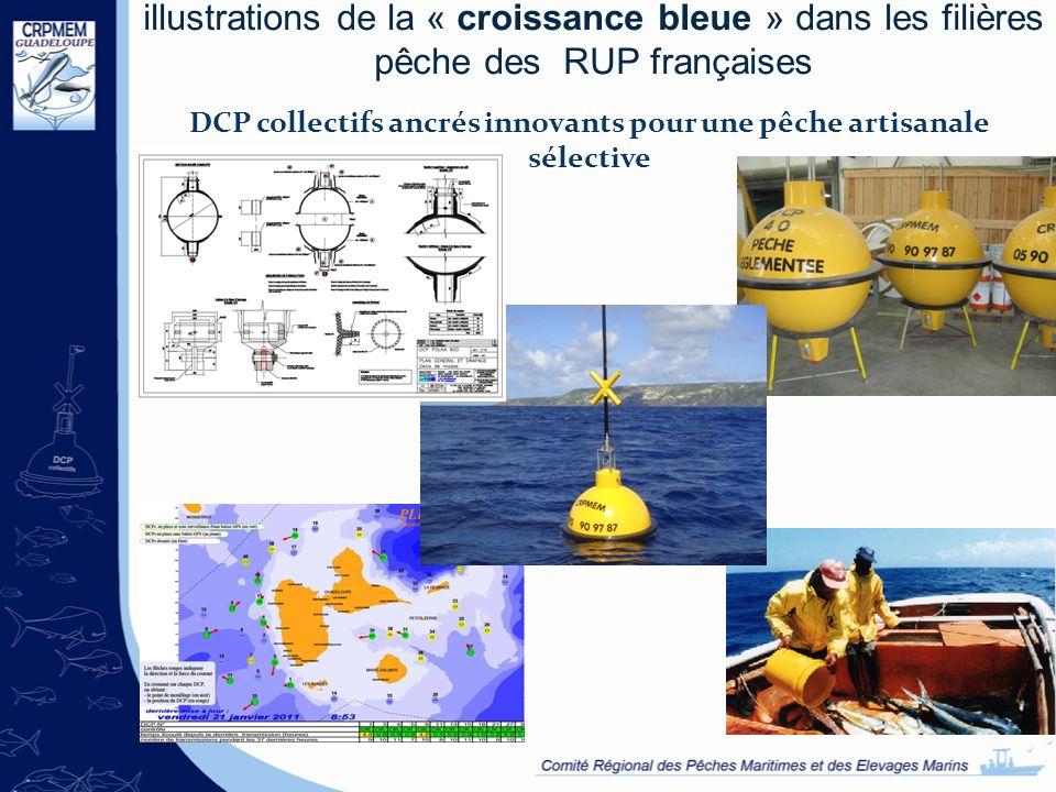 DCP collectifs ancrés innovants pour une pêche artisanale sélective