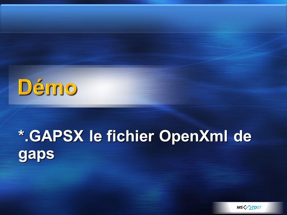 *.GAPSX le fichier OpenXml de gaps