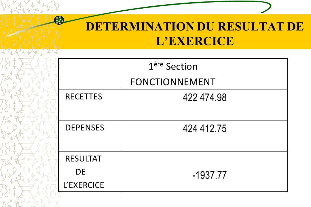DETERMINATION DU RESULTAT DE L'EXERCICE