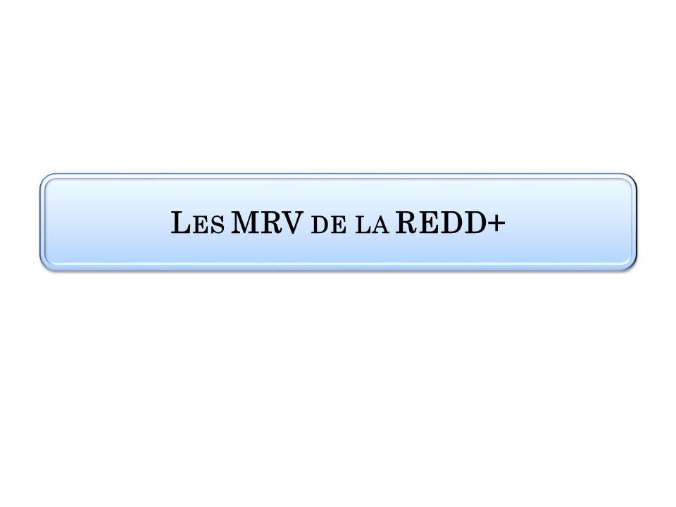 Les MRV de la REDD+