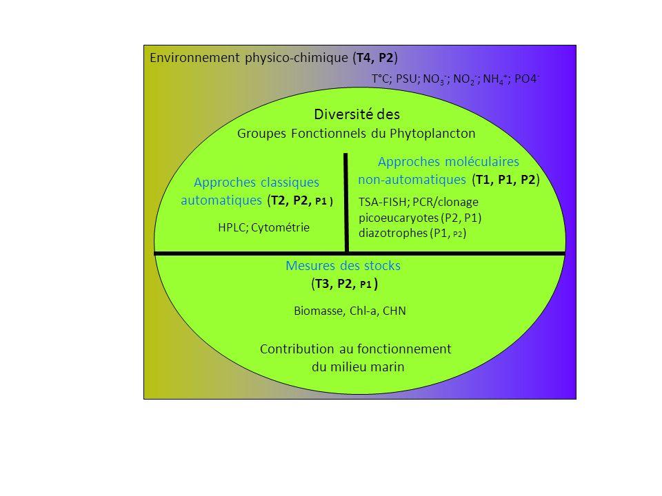 Diversité des Environnement physico-chimique (T4, P2)