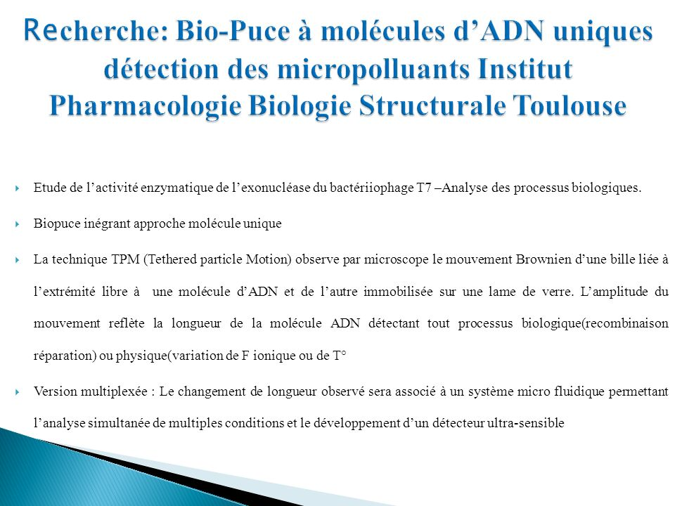 Recherche: Bio-Puce à molécules d'ADN uniques détection des micropolluants Institut Pharmacologie Biologie Structurale Toulouse