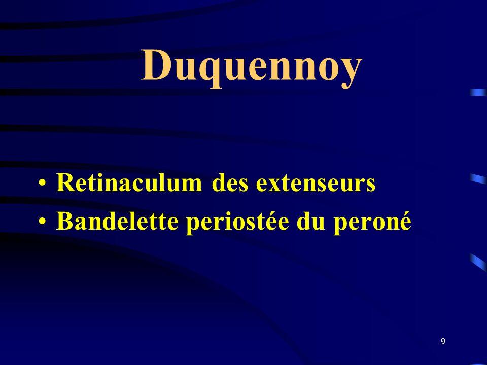 Duquennoy Retinaculum des extenseurs Bandelette periostée du peroné