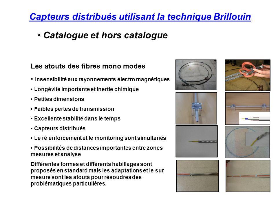 Capteurs distribués utilisant la technique Brillouin