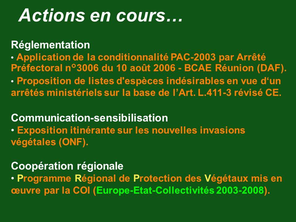 Actions en cours… Réglementation Communication-sensibilisation
