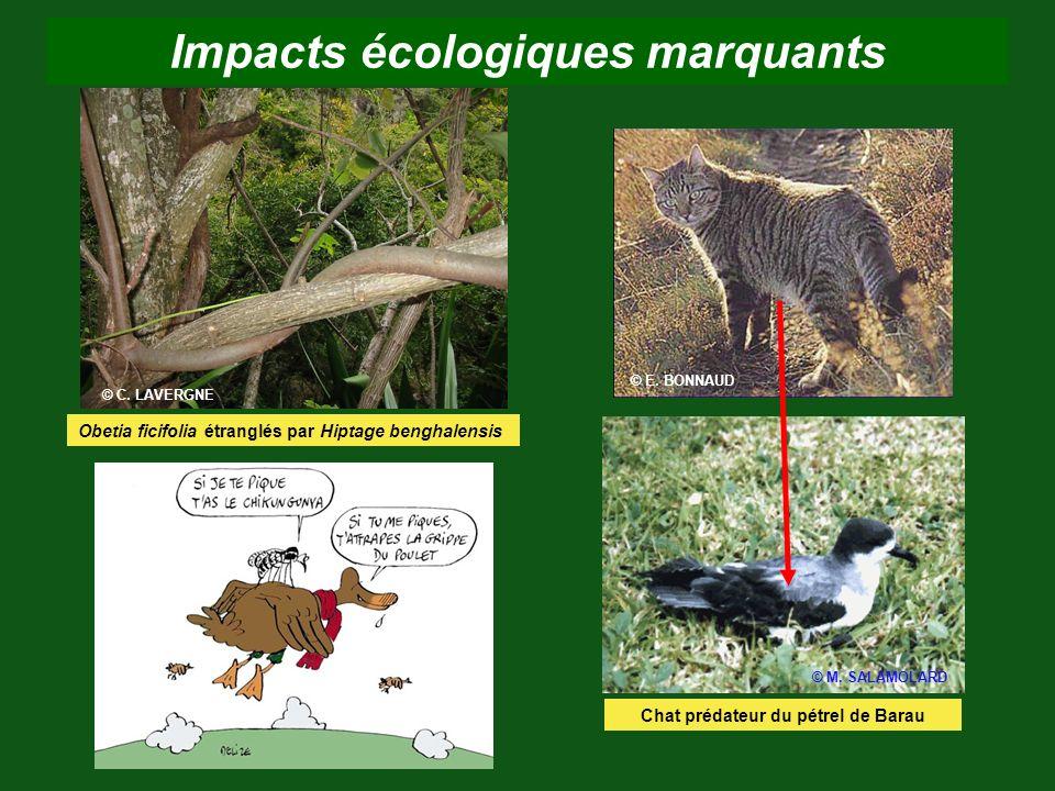 Impacts écologiques marquants