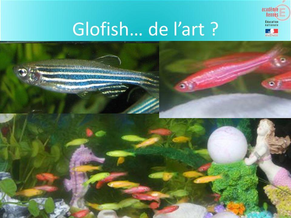 Glofish… de l'art