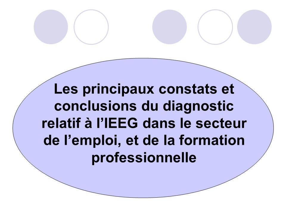 Les principaux constats et conclusions du diagnostic relatif à l'IEEG dans le secteur de l'emploi, et de la formation professionnelle