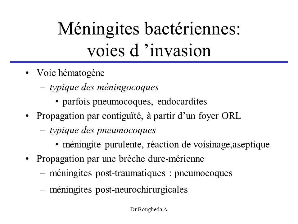 Méningites bactériennes: voies d 'invasion