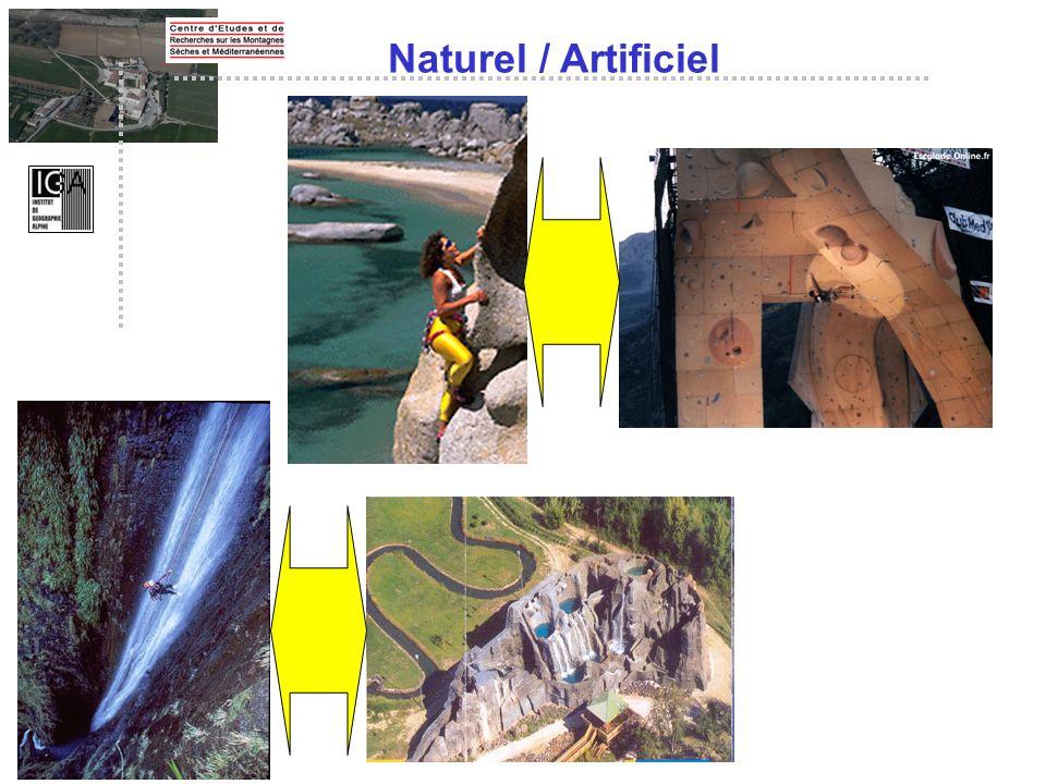 Naturel / Artificiel