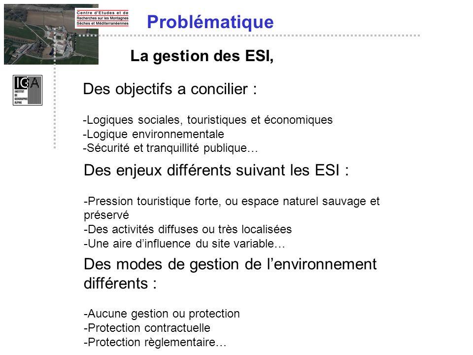 Problématique La gestion des ESI, Des objectifs a concilier :