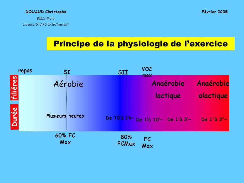 Principe de la physiologie de l'exercice