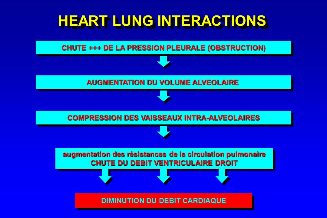 HEART LUNG INTERACTIONS