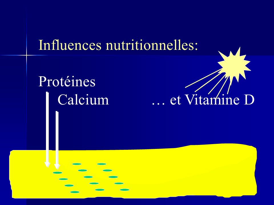 Influences nutritionnelles: