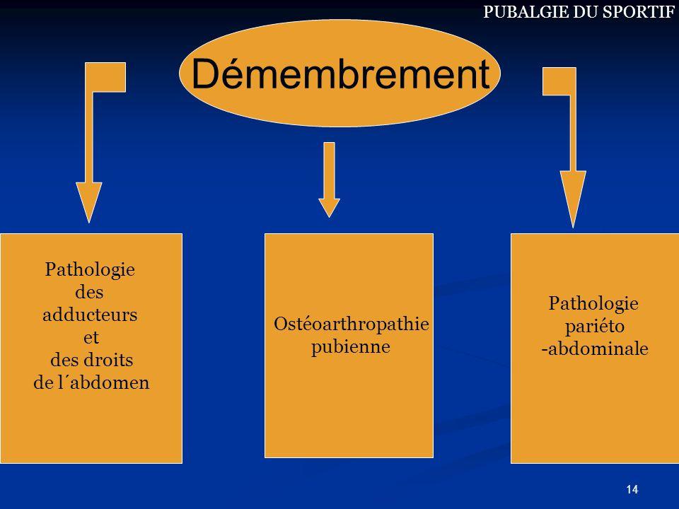 Démembrement Pathologie des Pathologie adducteurs Ostéoarthropathie