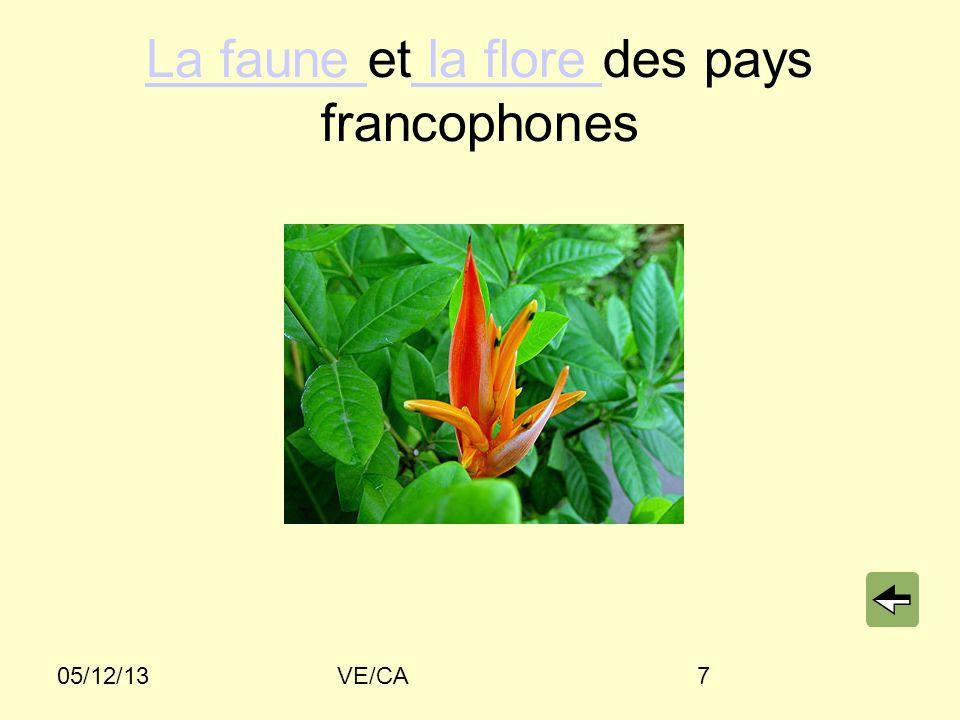 La faune et la flore des pays francophones