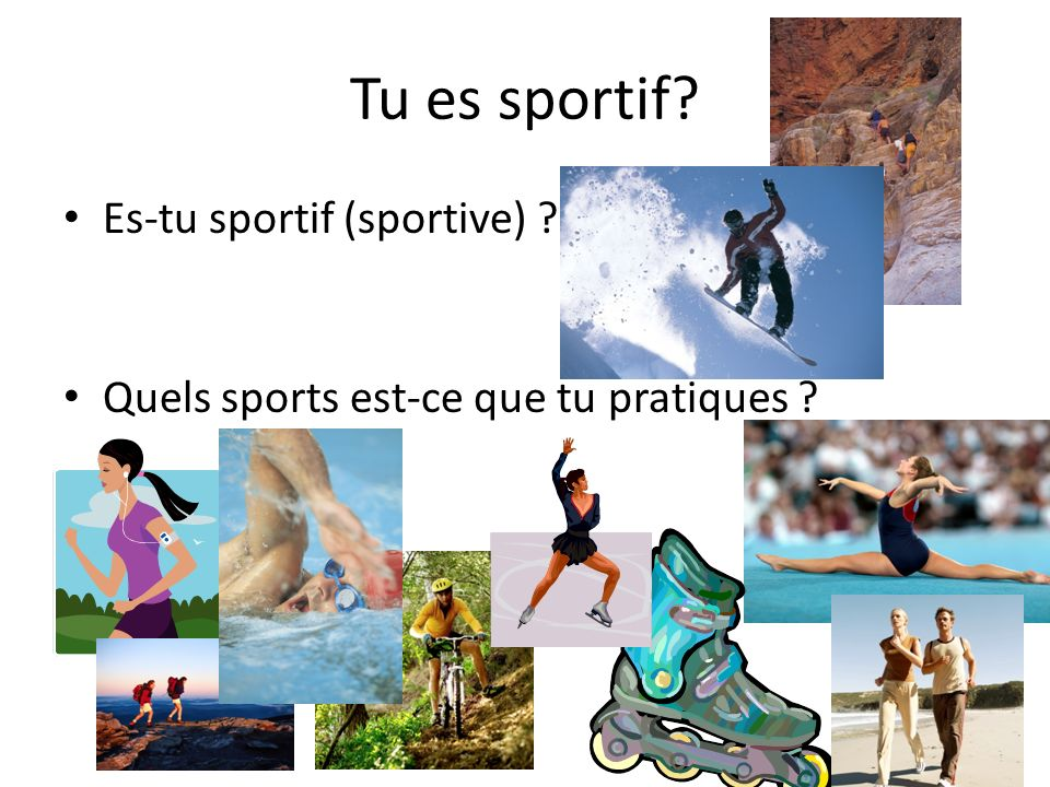 Tu es sportif Es-tu sportif (sportive)