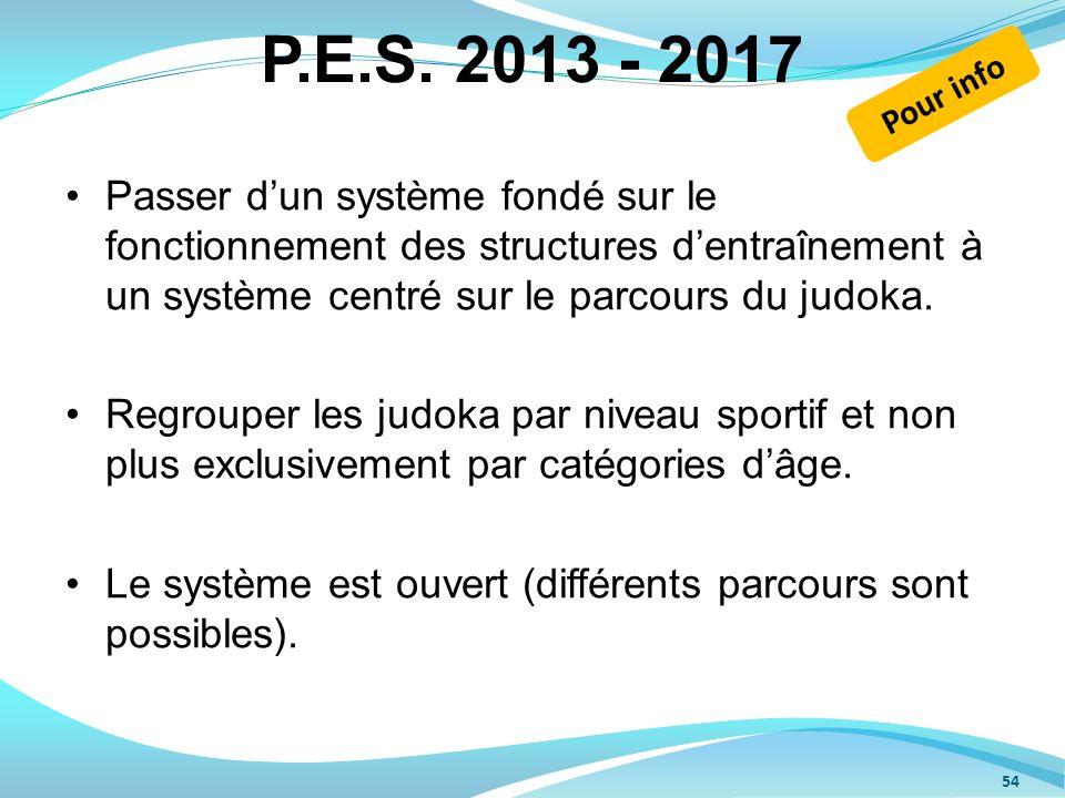 P.E.S. 2013 - 2017 Pour info.