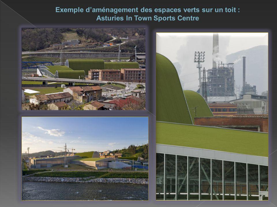 Exemple d'aménagement des espaces verts sur un toit : Asturies In Town Sports Centre